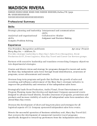 Best Vice President And Associate General Counsel Resumes Resumehelp
