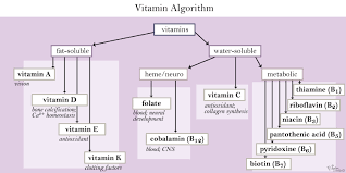 Water Soluble And Fat Soluble Vitamins Chart Water Soluble Vitamins Biochemistry Medbullets Step 1