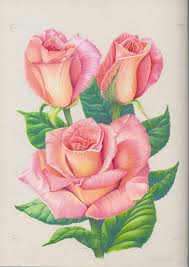 Small Picture 607 best dibujos images on Pinterest Drawings Tattoo ideas and