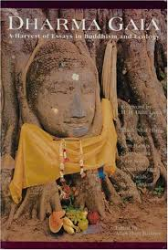 dharma gaia a harvest of essays in buddhism and ecology by allan 711657