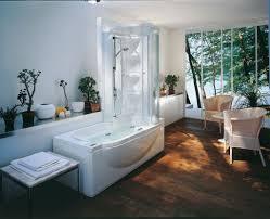 Bathtubs Idea, Jacuzzi Shower Combo Jacuzzi Tub With Shower Surround  Mesmerizing Natural Bathroom With Rectangular ...
