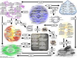 Aden S Renkei Chart 52 Interpretive Adens Renkei Chart