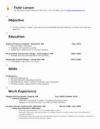 Criminal Justice Objective Statements For Resumes Criminal Justice Resume Templates Interests Resume Examples 21