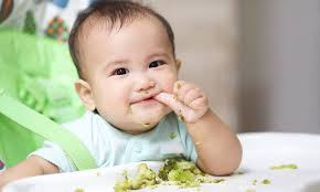 Starting Baby On Solids Chart India Babies Should Be Fed Solid Food From Just 3 Months Daily