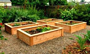 best way to make raised vegetable garden beds how to build raised vegetable garden beds raised