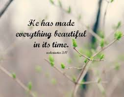 Bible Quotes About Beauty Of Nature Best of Ecclesiastes 24 Art He Made Everything Beautiful Time Print Scripture