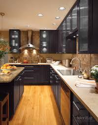 Merillat Kitchen Cabinets Merillat Masterpiecer Martel In Cherry Slate Merillat