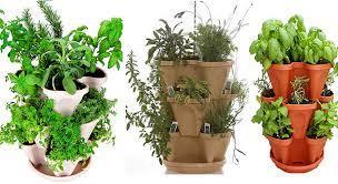 an organic indoor herb garden