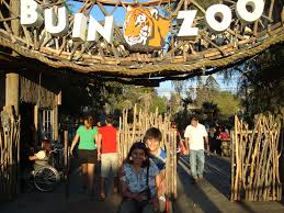 We and our partners process personal data such as ip address, unique id, browsing data for: Visita Al Buin Zoo By Kattia Quinones Jimena Luna Discapacidad