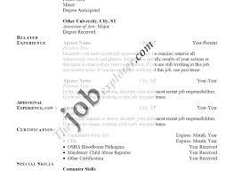 Amazing Job History Template Adornment Documentation Template