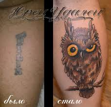 татуировка филин тату салон юрец удалец философия тату