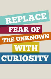 Curiosity Quotes Gorgeous Replace Fear Of The Unknown With Curiosity Picture Quotes