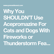 Why You Shouldnt Use Acepromazine For Cats And Dogs With