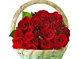 roses flowers bouquet basket love romance life happiness couple wallpaper 3840x2880 621446 wallpaperup
