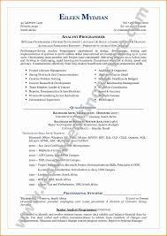 ChronoFunctional Resume Functional Resume Template Awesome Chrono Functional Resume 21