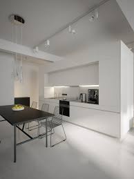 Modern Minimalist Black And White Lofts - White modern kitchen