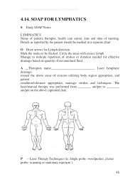 Low Level Laser For Physical Therapists Book Preview