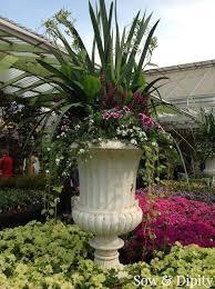Large planter design (4)