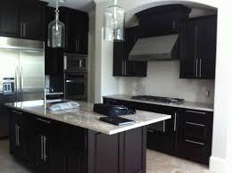 Modern Kitchen Dark Cabinets Modern Kitchen Design Black Cabinets Electric Cooktop Under