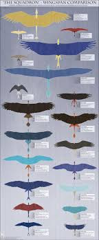 Personal Wingspan Comparison Reference By Twilightsaint