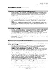 Template Professional Summary Resume Examples Templates Finance