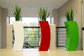 modern office plants. Modern Office Plants Execuflora Modern Office Plants