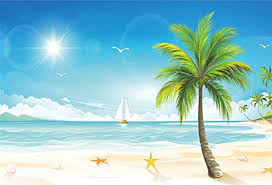 lfeey 7x5ft polyester cartoon seaside beach backdrop for photography tropical summer sailboat starfish wallpaper kids