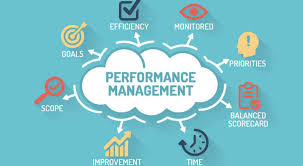 performance management system types