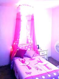Pink Bed Canopy Princess Canopies Drapes Over Dog With Diy – acojais.com
