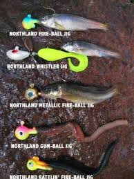 Image result for lure vs live bait combinations pics