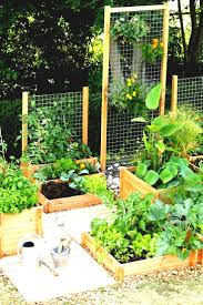 best garden vegetables. Best Backyard Garden Ideas On Pinterest Gardening And Vegetable Gardens Vegetables