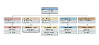 Webinar Creating Order Out Of Chaos Using Orgchart Platinum