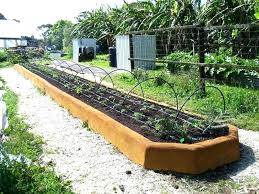 garden materials. Raised Bed Garden Materials Beautiful Flowers As Companion Plants In Vegetable Gardens . S