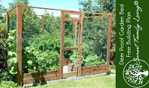 deer proof garden. Deer Proof Garden Build A And Pest Bed Square Foot Gardening Raised I