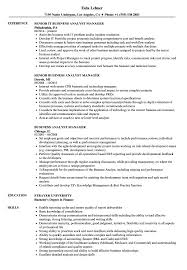 97 Business Analyst Manager Resume Business Analyst Project