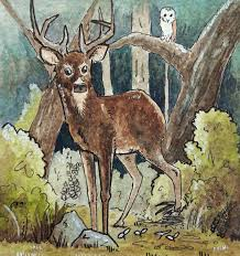 saatchi art artist rebecca sutton painting deer in the woods art
