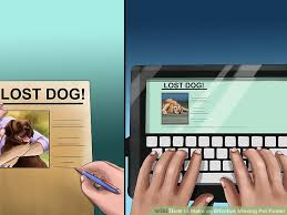 How To Make An Effective Missing Pet Poster With Pictures