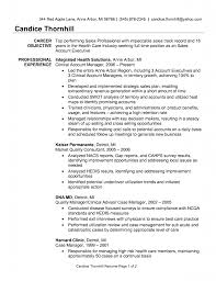 Sample Resume For Account Manager Example Of An Essay In Apa Format