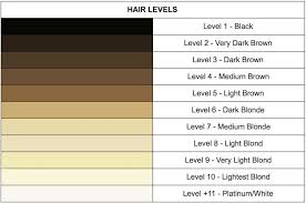 Hair Colour Level Chart An Introduction To Hair Levels And Tones Finding Your
