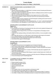 Inside Sales Representative Resume Resume Sample
