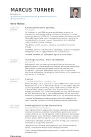 Business Development Specialist Resume Samples Visualcv Resume