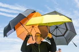 The Best <b>Umbrella</b> for 2020 | Reviews by Wirecutter