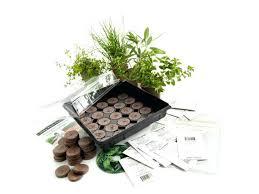 herb garden starter kit image 0