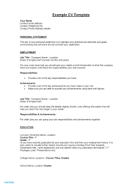 Professional Achievement Examples Sample Of Achievement Statements Resume New Resume Summary Template