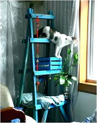 cat furniture inexpensive cat trees inexpensive cat furniture inexpensive cat furniture top entertaining cat trees cat