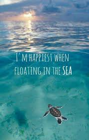Sea Quotes Inspiration Coastal Quotes I'm Happiest When Floating In The Sea