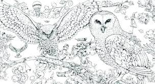 Bird Coloring Pages Coloring Pages Realistic Bird Coloring Pages