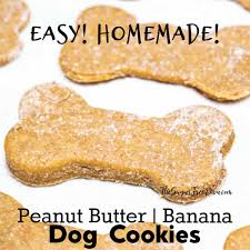 get the top rated recipe for doggie biscuits i at bone appé see how to make pooch pleasing dog