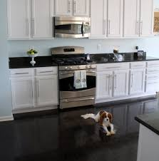 White Kitchen White Floor Other Option For The Kitchen White Cabinets Black Floor Floor