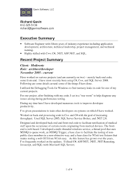 Executive Summary Resume Example New